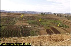 A New Military Road Around Har Homa settlement – Update