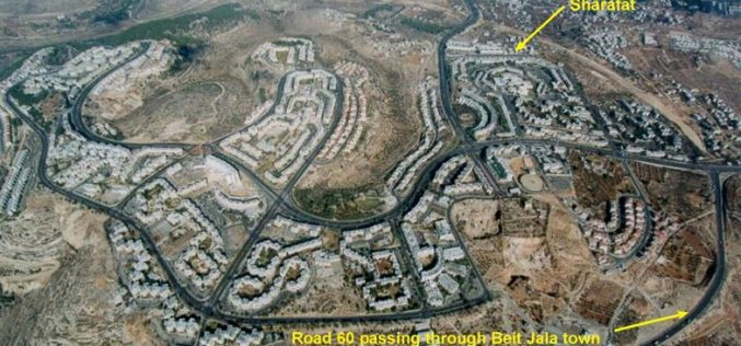 Gilo's plan of Expansion: 260 new housing units …!