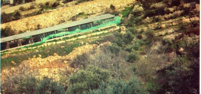 A battle of will … ! Beit Surik, Qattanah & Beddo Villages: An Agricultural Triangle Under Israeli Attack