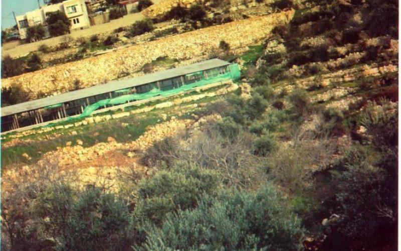 A battle of will … ! Beit Surik, Qattanah & Beddo Villages: An Agricultural Triangle Under Israeli Attack