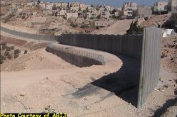 The Segregation Wall: Grave impacts and violation of Palestinians' Rights