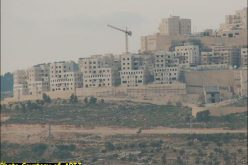 Illegal Israeli Settlements Expanded Dramatically between 2002 and 2004