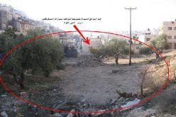 اعتداءات الاستيطان على أراضي وعقارات سلوان مستمرة محافظة القدس