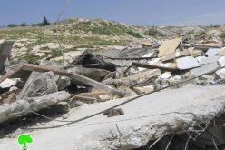 Israel's house demolition campaign is continued in Jerusalem