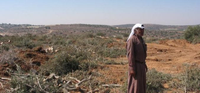 Impact of Wall inception on the border villages of Dura region