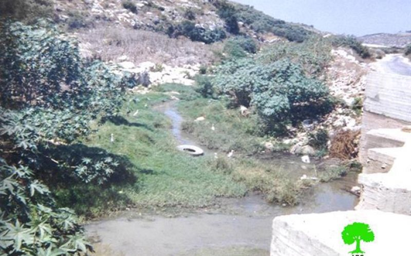 Israeli settlements transform Wadi Beit Amin into a highly polluted area