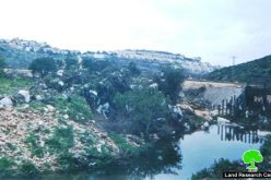 Wadi Qana polluted by Israeli settlements