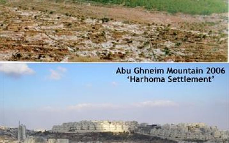 الحكومة الاسرائيلية تواصل نشاطاتها الاستيطانية في مستوطنات الضفة الغربية