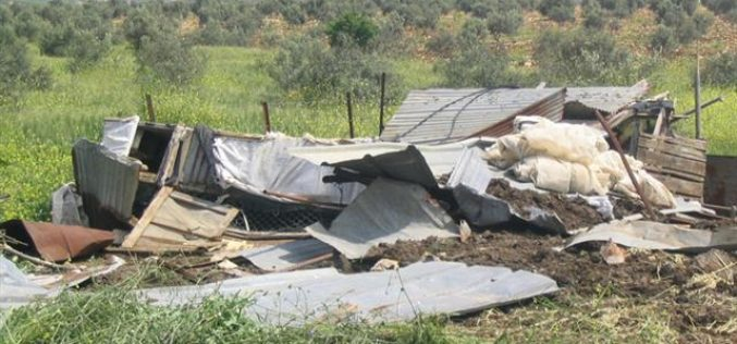 Imreiha community faces the threat of eviction for the third time in history