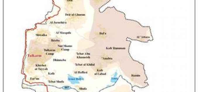 Israeli Settlers set fire into 200 dunums of Qaffin Village Lands