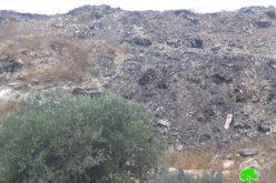 مكب النفايات بين بلدتي عزون وجيوس وأثره على صحة الإنسان والبيئة