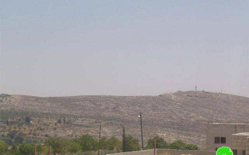 المستعمرون الاسرائيليون يسرقون أشجار الزيتون ويزرعونها داخل المستعمرات