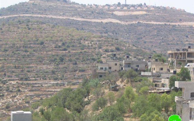 Colonists from Ma'ale Levona destroy dozens of olive trees in Al Lubban Ash Sharqiya village