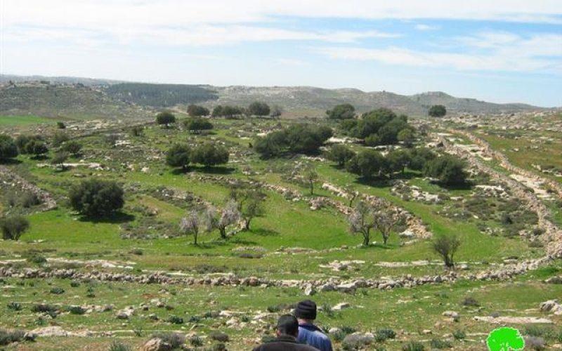 مستوطنو عتنئيل يكررون اعتداءاتهم على أراضي قرية دير رازح