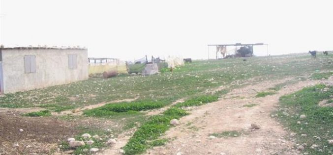 سلطات الاحتلال الاسرائيلي تنذر المزيد من المنازل الفلسطينية بالهدم في عرب الرماضين الشمالي