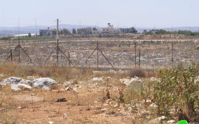 Israeli Occupation Forces Continue to Prevent Access of Palestinians from the Village of Ras Al Tirah to their Isolated Lands behind the Wall