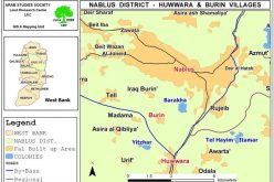 Yitzhar Settlers Attack Palestinians and their Lands in the Villages of Burin and Hiwwara