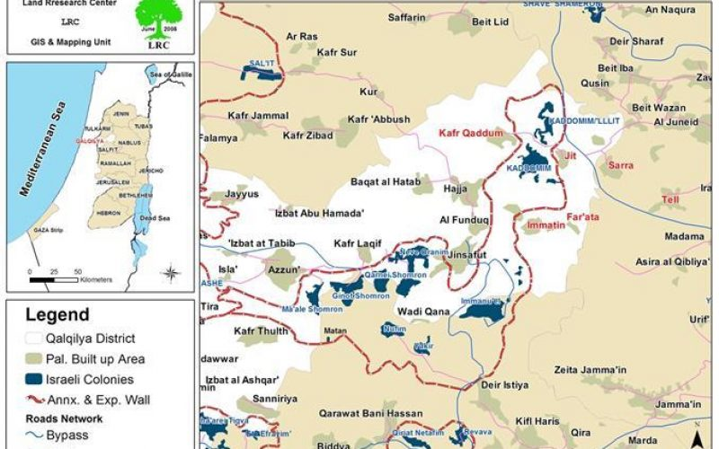 Settlers of Gila'ad Zoher outpost Continue Sabotaging Palestinian Lands in the Village of Far'atta