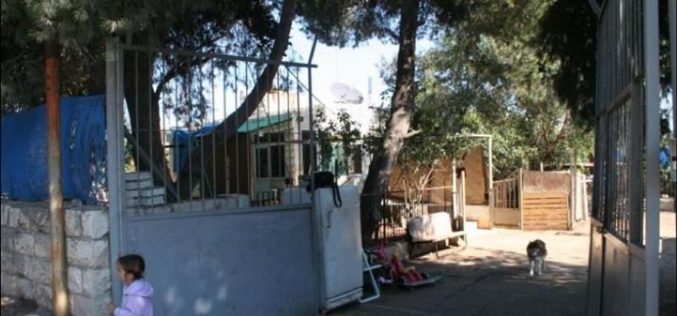 The Israeli Municipality of Jerusalem step up its Policy Demolishing Palestinian Homes