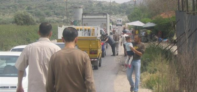 توسيع حاجز عناب الاحتلالي على حساب الأراضي الزراعية الفلسطينية