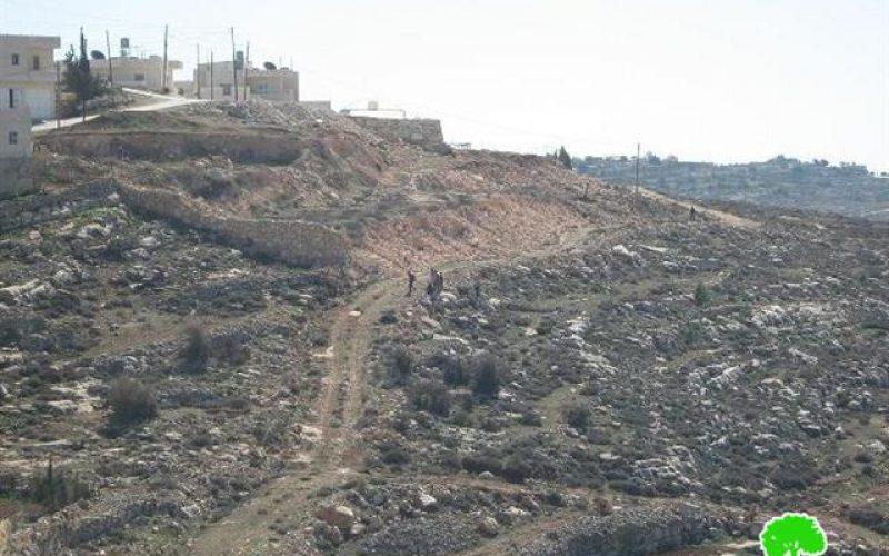 تخريب الأراضي الزراعية واعتداءات على المواطنين في بلدة العديسة