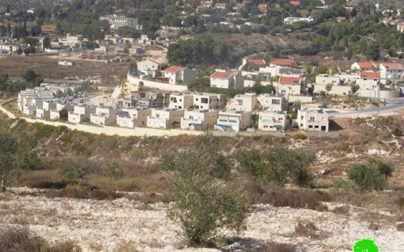 Israeli Occupation Forces Prevent Tens of Palestinian Farmers from Reaching Their Lands in Deir Istia
