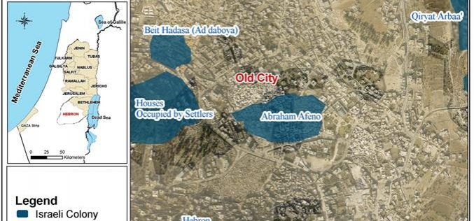 Israeli settlers seize four commercial shops inside the Old City of Hebron