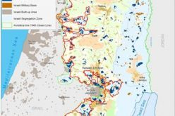 Israel's Settlements' Program under International Law