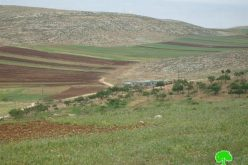Residential and agricultural buildings demolished in Khirbet at Tawil