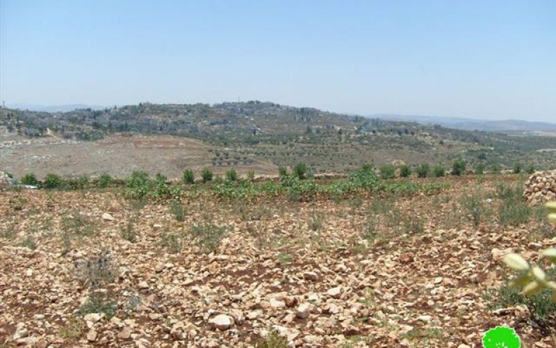 إخطار بوجوب إخلاء 380 دونماً من أراضي قرية يعبد تمهيداً لمصادرتها