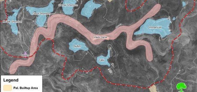 المستوطنون الاسرائيليون يواصلون اعتداءاتهم على الأراضي الزراعية في وادي قانا