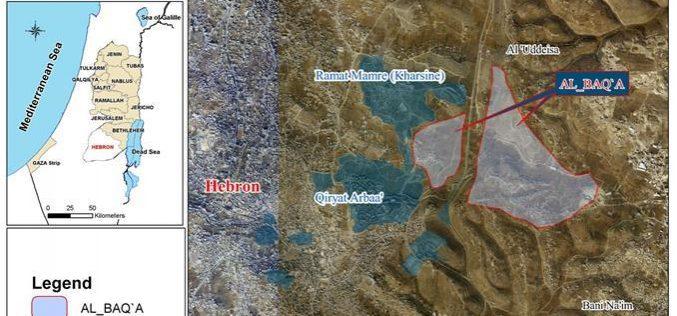 حملة هدم جديدة تجتاح حي البقعة وتدمر الثروة الزراعية شرق الخليل