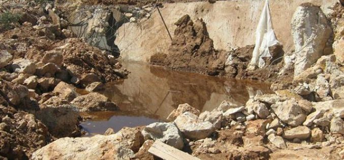 Israeli war against Al Baq'a agriculture continues unabated