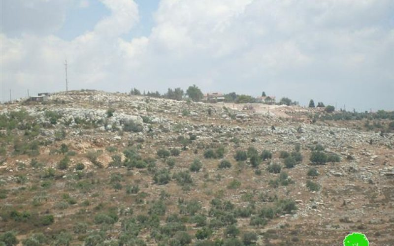 Palestinian land bulldozed for colonial expansion in Sarta village