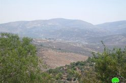 """أعمال توسيع في مستعمرة """" أفني حيفتس"""" على حساب الأراضي الفلسطينية في قرية كفر اللبد"""