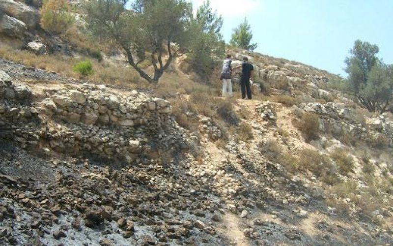 المستوطنون الاسرائيليون يحرقون مزيداً من  أراضي  الفلسطينيين في  بيت أمر وصافا