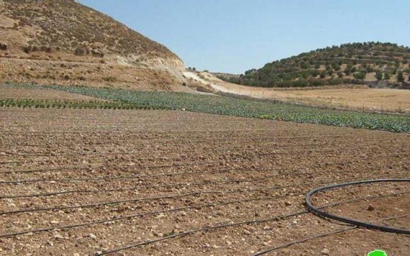 الاحتلال يصادر صهاريج مياه زراعية في قرية سوبا غرب الخليل