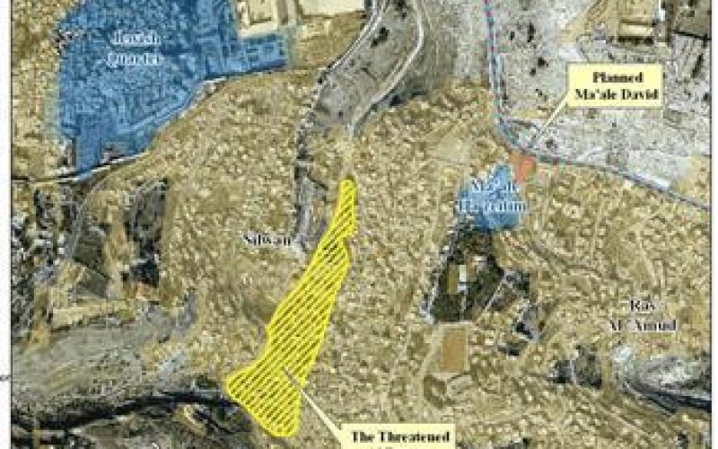 """The Judaization of the Eastern Part of Jerusalem City"" <br> What is really happening in Al Bustan Neighborhood?"