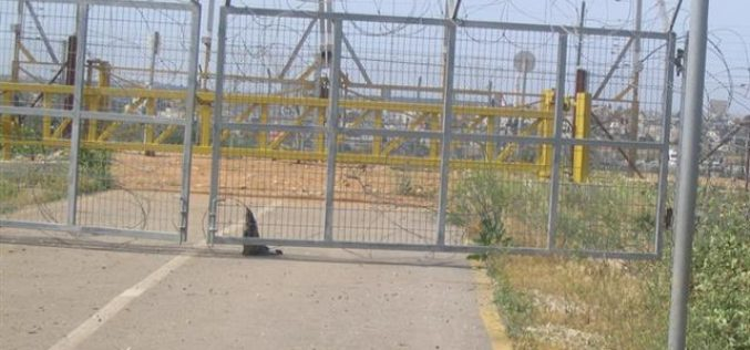 Israeli Occupation Forces prevent Mas-ha villagers from reaching their lands behind the Isolation Wall.