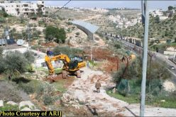 جرافات الاحتلال الاسرائيلي تستهدف أراضي مدينة بيت جالا لبناء مقطع جديد من جدار العزل العنصري