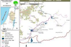 مستعمرو ماعون يعتدون على أراضي عائلة الهريني في خربة التواني جنوب يطا