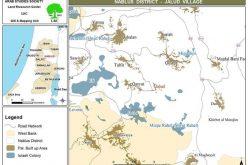 مستوطنو شيفوت راحيل يجرفون 14 دونماً  من الأراضي الفلسطينية في قرية جالود