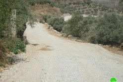 Stop-Work Order against an Agricultural Road in Kafr Kaddum