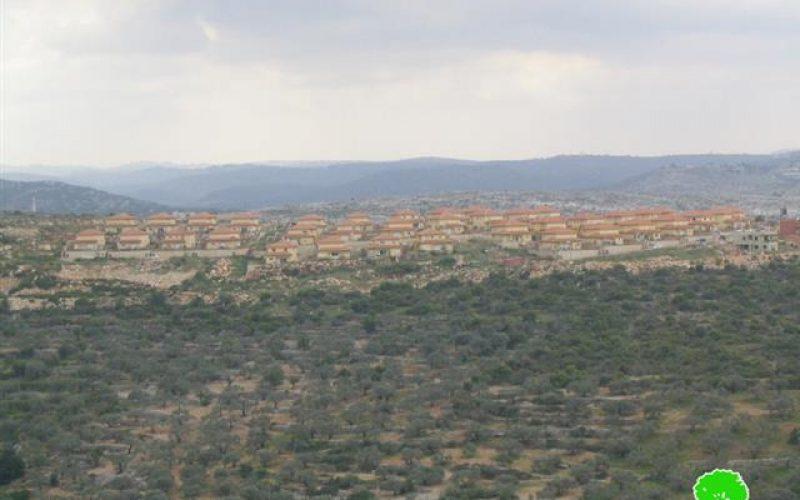 أنياب جرافات الاحتلال تطال مجدداً  أراضي قرية اماتين في محافظة قلقيلية