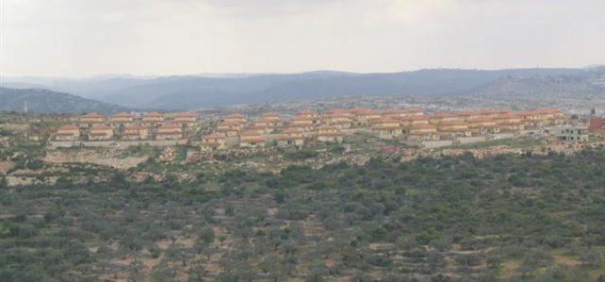 Israeli Dozers consume more Amatin lands