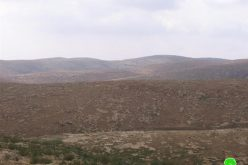 Israeli colonists take over Palestinian Lands in Yatta town