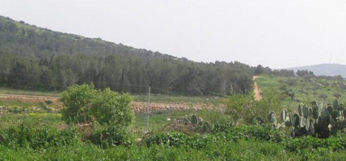 إخطاراً عسكرياً يقضي بتمديد فترة وضع اليد على أراضي 12 قرية  في محافظة جنين