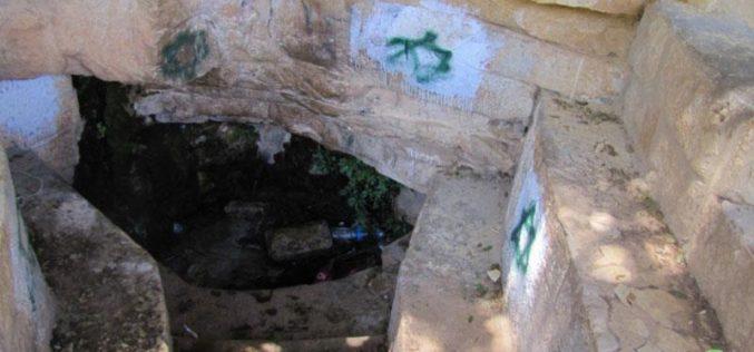 """مستعمرو """"بيت إيل"""" يعربدون ويعتدون في قرية دورا القرع- محافظة رام الله"""