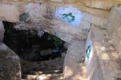 Israeli Aggressions Continue.. Beit El colonists Bully Dura al Qar' – Ramallah Governorate