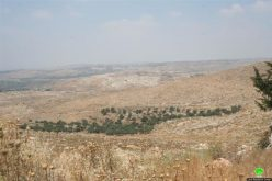 """The Israeli Occupation Milling of a Road Designated for """"Military Purposes"""" Deir Qaddis – Ramallah Governorate"""